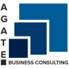 Agate Business Consulting
